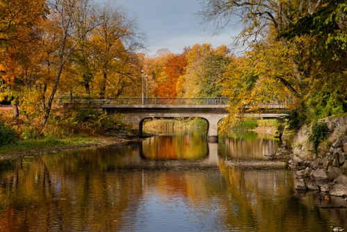 Gratisbild på Bro i höstfärger